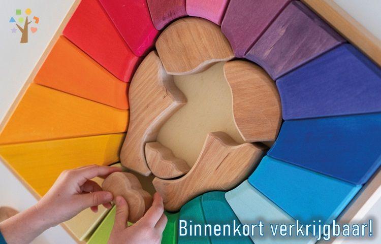 Binnenkort verkrijgbaar - Regenboogleeuw bouwset